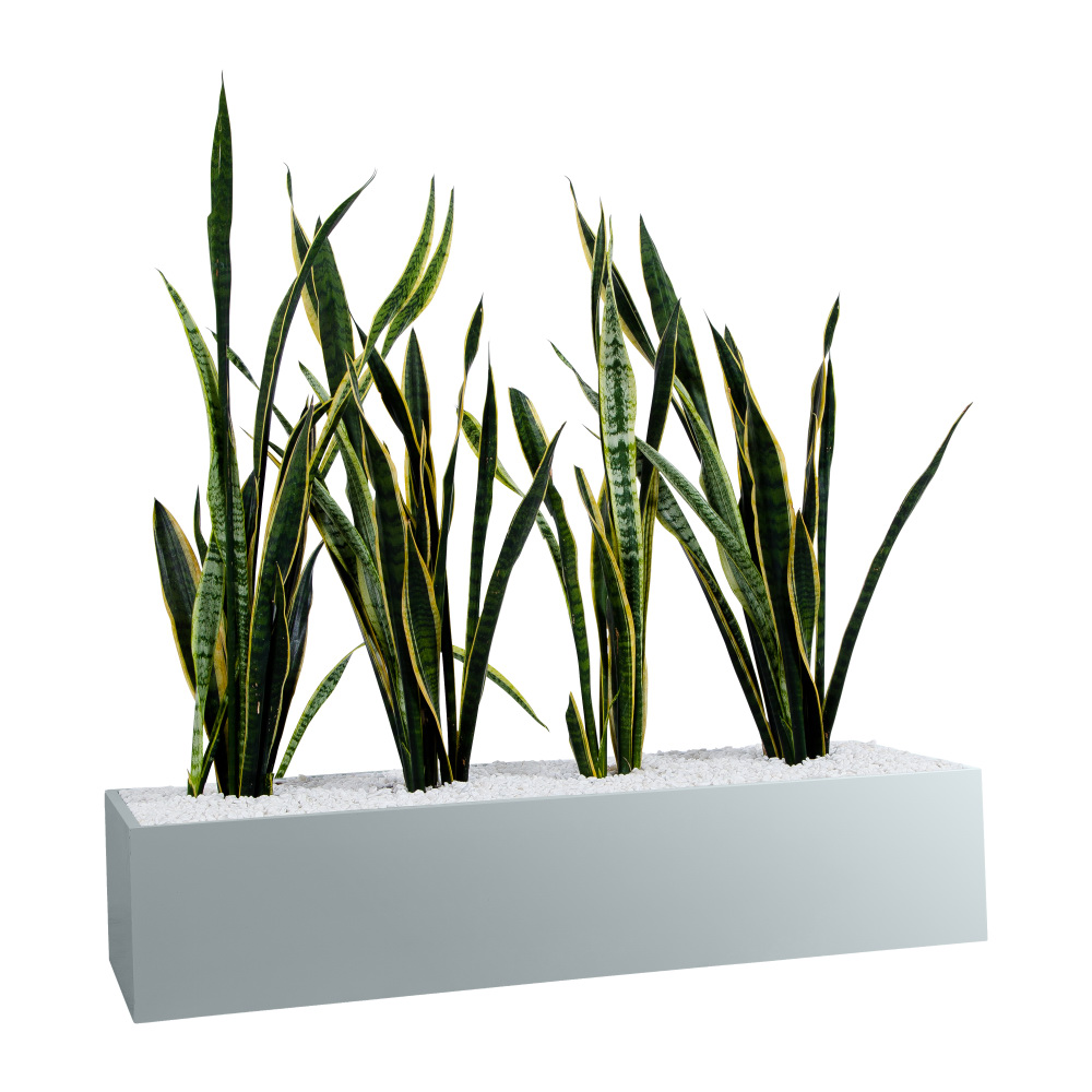 office planter boxes. sbpstatewideplanterboxlightgrey office planter boxes