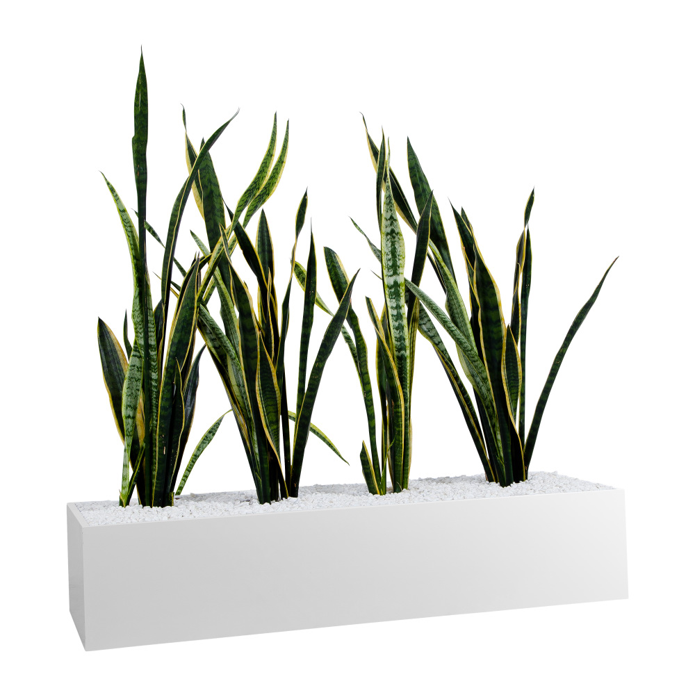 office planter boxes. Planter Boxes - To Suit Tambours Or Standalone Statewide Office Furniture